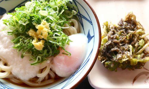 丸亀製麺 とろ玉冷大