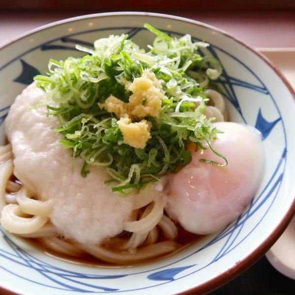 丸亀製麺 とろ玉冷大(520円)