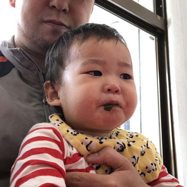 1歳児、パクチーを食べる